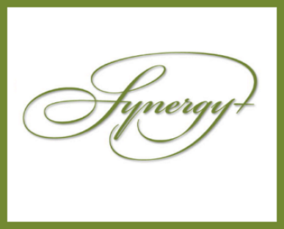 Synergy Plus Physical Therapy & Pilates Studio logo