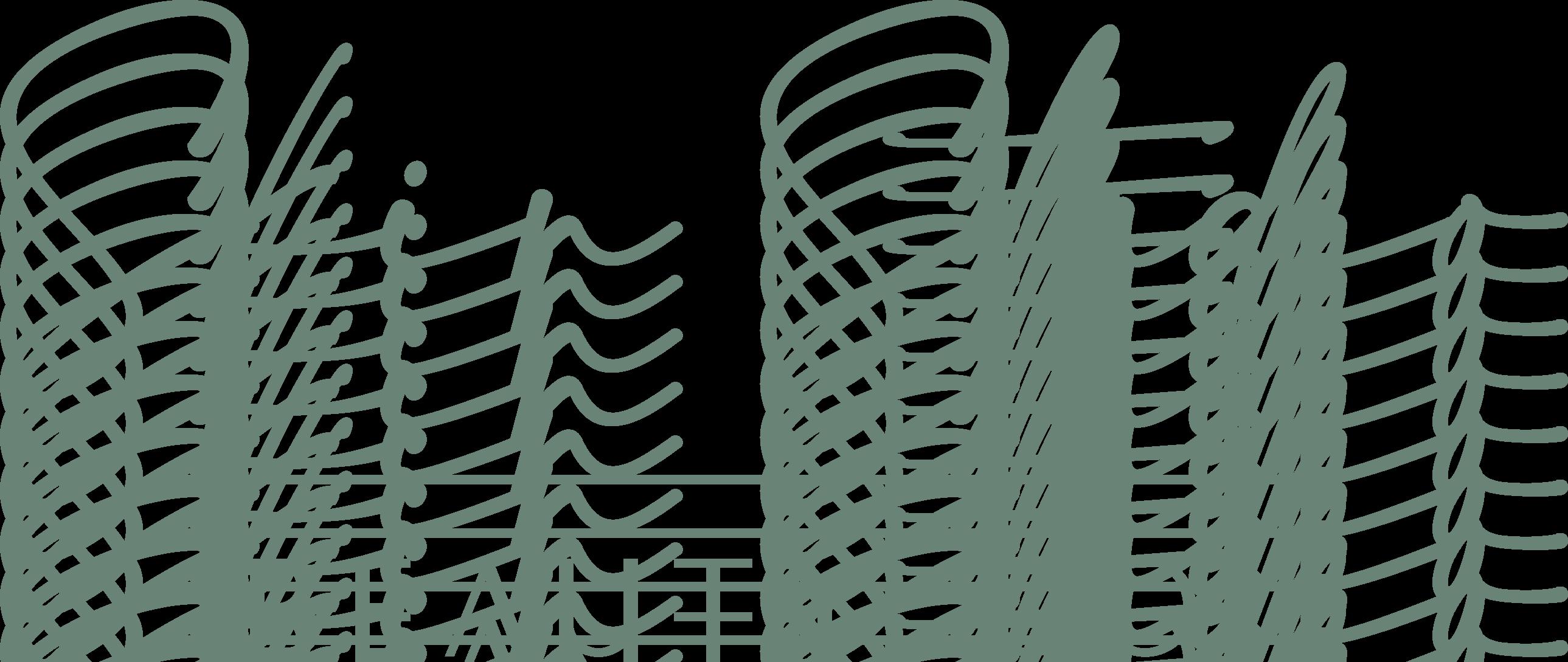 Skin Studio Beauty Co. logo